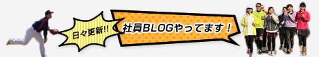 日々更新!社員ブログやってます!